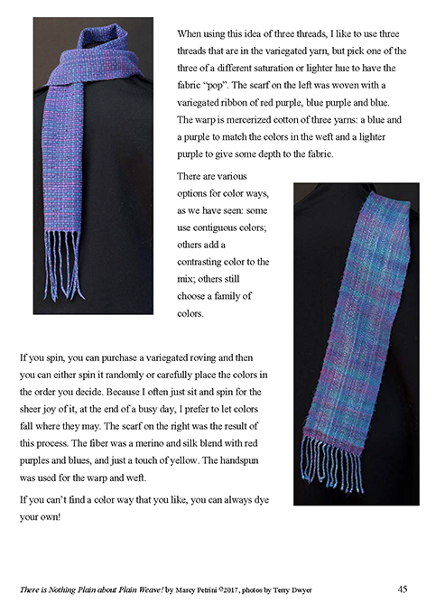 There is Nothing Plain about Plain Weave - as an eBook - Click Image to Close